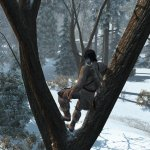 Скриншот Assassin's Creed 3 – Изображение 24