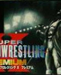 Обложка Super Fire Pro Wrestling X Premium