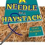 Скриншот A-Needle-In-A-Haystack