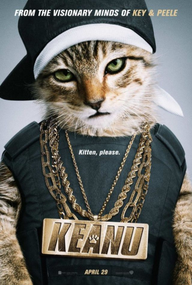 Не трожь котенка! Вышел трейлер очень смешной пародии на «Джона Уика» - Изображение 1