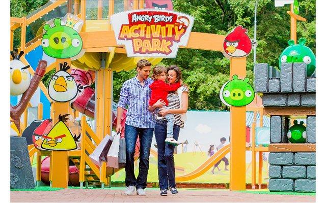 Томские власти предложили Rovio построить в области спортивный центр - Изображение 1