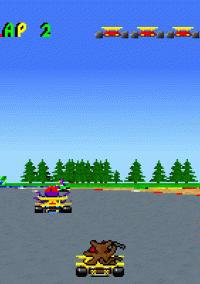 Skunny Kart – фото обложки игры