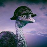 Скриншот Emu War! – Изображение 7