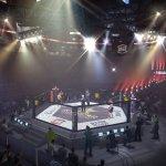 Скриншот EA Sports MMA – Изображение 50