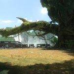 Скриншот Tekken Tag Tournament 2 – Изображение 37