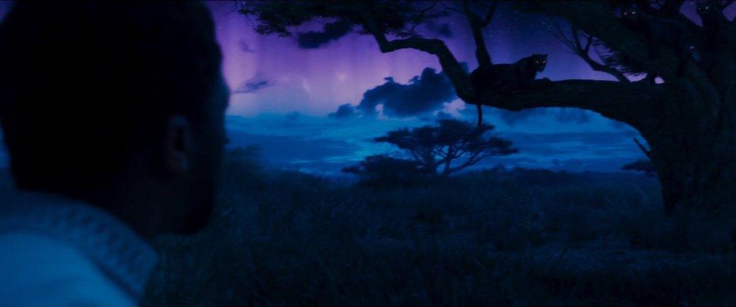 Разбираем новый трейлер «Черной пантеры»: что скрывает Ваканда? | Канобу - Изображение 24