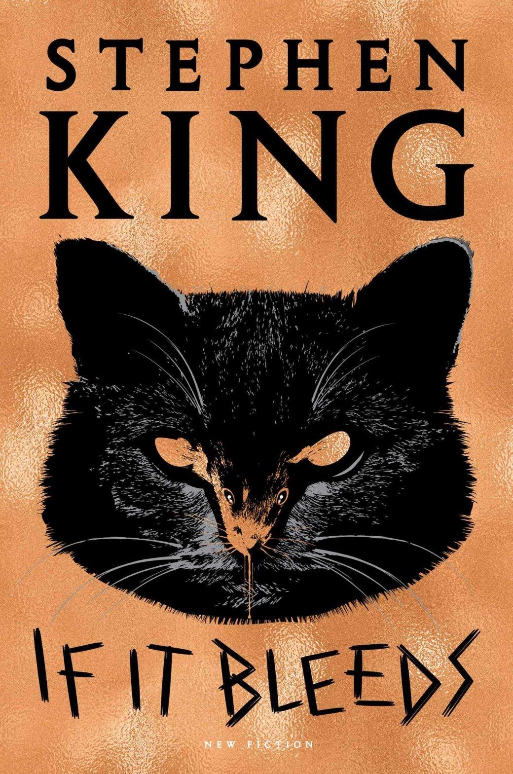 Десять самых ожидаемых книг 2020 года. От сборника Короля ужасов до продолжения  подростковой серии    Канобу - Изображение 1222